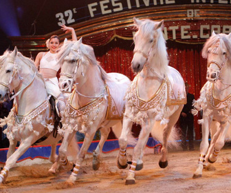 Festival du cirque de Monte Carlo replay