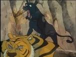 Replay Le livre de la jungle - episode 52 - vf
