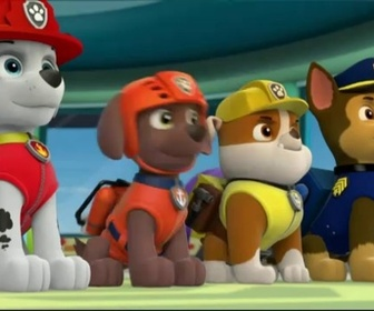 Paw Patrol replay
