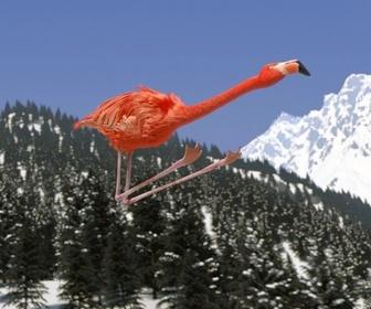 Replay Athleticus - Saut à ski