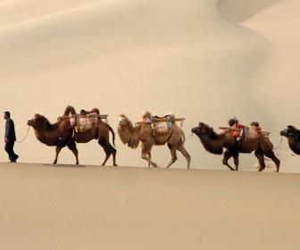 Sur les traces de Marco Polo replay
