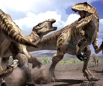 Safari prehistorique replay