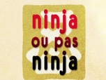 Replay Mini Ninjas - Ninja ou pas