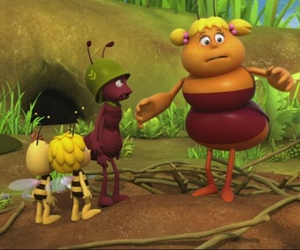 Replay Maya l'Abeille - S01 E50 - Molly démolit