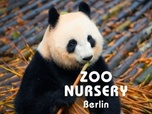Replay Zoo nursery : Berlin - S7 : Épisode du mercredi 2 octobre 2019