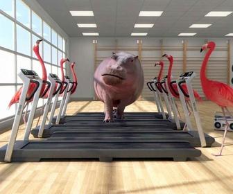 Replay Athleticus - Salle d'entraînement