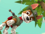 Replay La couronne antique - Paw Patrol : la Pat'Patrouille