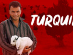 Replay Tribal Wives - En Turquie