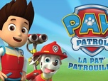Replay Paw Patrol, la Pat'Patrouille - S05 - Sauvons les tortues