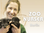 Replay Zoo nursery : Berlin - S3 E5 : Épisode du lundi 6 juin 2016